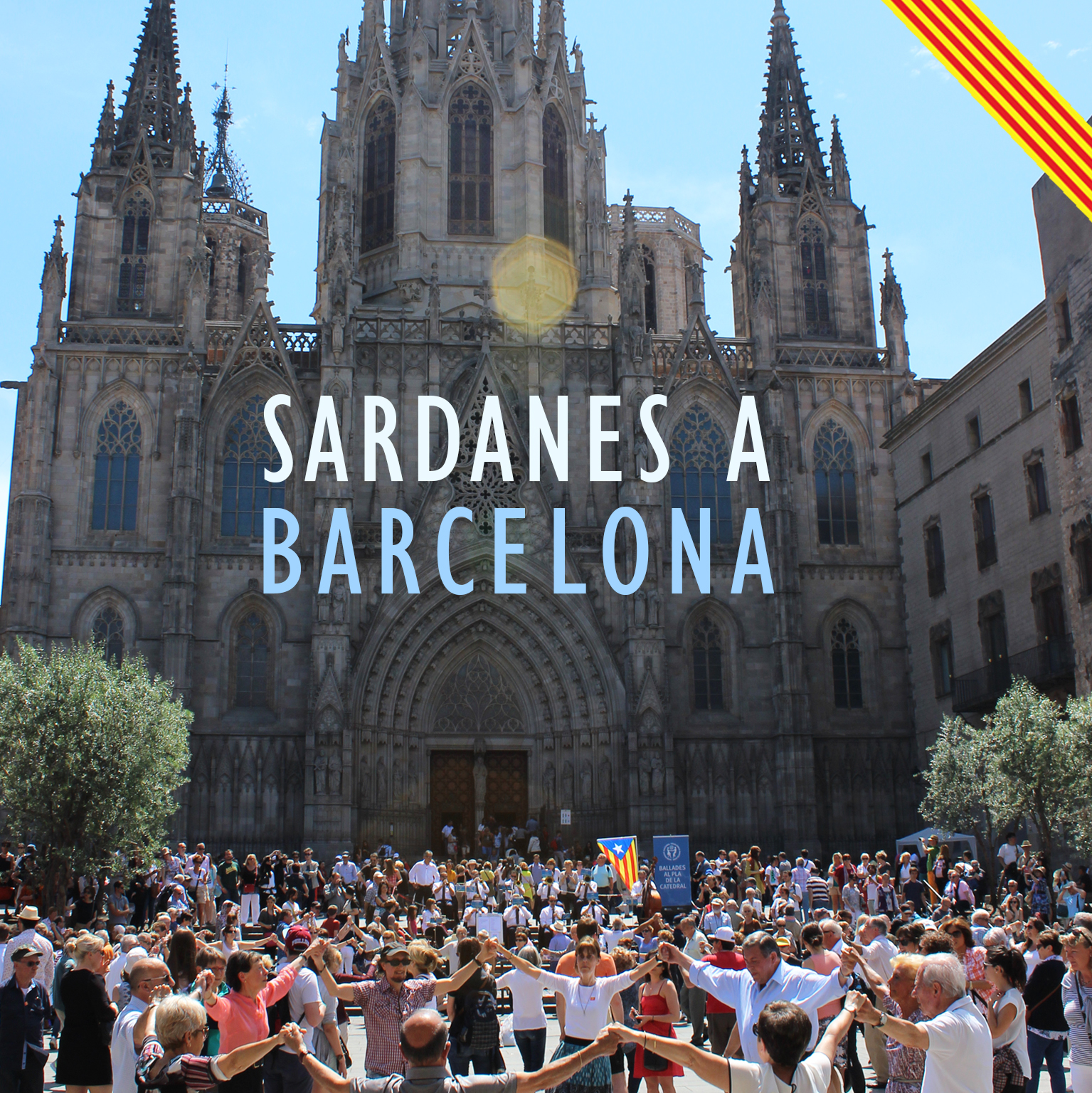 Ballada de sardanes @ Pla de la Catedral de Barcelona